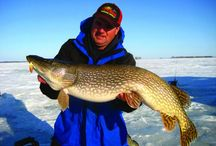 Ice Fishing in North Dakota / Wintertime in North Dakota means it's time to get out and play in the snow. Take in the white blanketed landscape as you enjoy cross-country skiing, snowshoeing, dogsledding, ice skating, ice fishing, downhill skiing, snowmobiling and more.