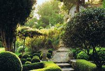 gardening ideas / by Jeni Walker