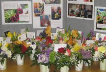 Special Memorable Events 2015 / Special memories and events for the Power of Flowers Project in 2015
