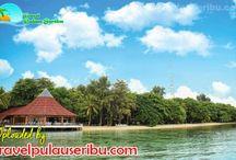 Pulau Pantara / Pulau Pantara merupakan Pulau Resort yang tergolong mewah. Fasilitas dan Penginapan Cottage yang bagus membuat anda ingin berlama - lama di Pulau Pantara .