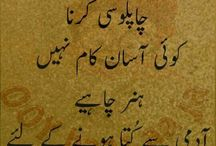 urdu writes