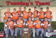 Tuesdays Team / Check out Tuesday's Team. Every Tuesday we will feature a team from around the country. Please send us your team photo, bio and logo (if you have one) and you could be selected as Tuesday's team. Your team manager will receive a Thank You package from SPN! Please send to spn@slo-pitch.com