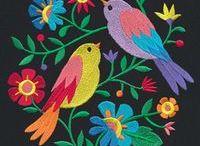 cores de pássaros