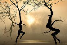 #Treetastic / *#treetastic is something which is innovative, interdisciplinary & inspiring at the same time. https://mytreetv.wordpress.com/