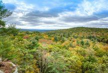 Hudson Valley Land for Sale