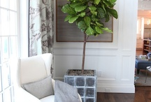 Floors / by Stephanie Fisher Designs