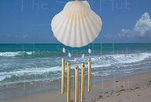 Shell Windchimes