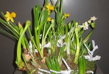 vegetatief arrangements