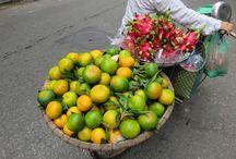 Viajes a Vietnam / Descubre sus secretos y sus exóticas costumbres.