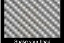 Afterimage Optical Illusions