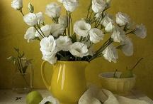 FRESH CUT BEAUTY... / I Love All Kinds Of Flowers! / by Lisa Hight