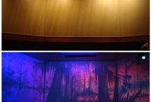 Murals - Dual Images / Wildfire UV Black light effect