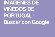 IMAGENES DE VIÑEDOS DE POTUGAL