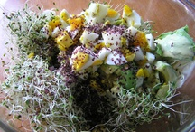 Feed Me: Sprouts, Shoots & Microgreens