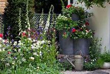 Country Garden Design Ideas