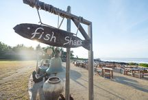 The Fish Shack / A place to enjoy all things seafood / by Shanti Maurice