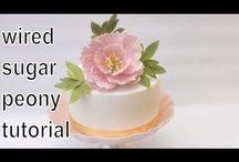 Cake decorating video tutorials / Videos