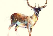Illustrations / by Annalisa Ferrara