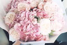 Kukkia kukkia