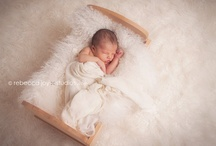 newborn/kids photography / by Elizabeth Smith