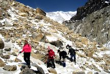 Annapurna Region / Annapurna Region is the most popular trekking route for the trekker's one of the top ten trekking trails of the world. It offers excellent view of the three peaks over (8,000m.) walking through the rhododendron forest and the deepest Kaligandaki gorge in the world add spice to this trip.
