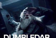 Harry potfleur