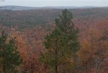 Oklahoma Land for Sale / Oklahoma has long been one of Americas greatest kept secrets, but word is getting out about this great state.  Oklahoma land for sale includes mountains, forests, and prairies which are perfect for recreational activities like hunting or even for your future home.