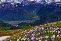 Wiosna w górach.