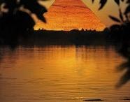 Egyptology / by Amanda Splittorf