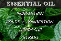 Essential Oil Tips / by HoneyBeeHolistics