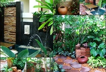 Garden ideas / by Lindsey Taylor