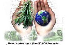 Hemp Can Save the World / Hemp/Cannabis is an AMAZING plant that should be used for more applications - from food and medicine to fiber and fuel!  Individuals deserve the right to use hemp!