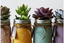 Succulents / Painted mason jars
