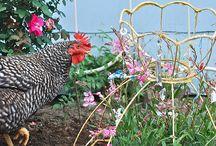 защита растений ограждения