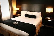 adult webcam conference hotel