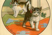 Cat Patrick cards