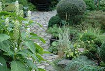Gardenideas