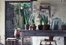 potting sheds
