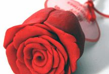 Roses / by Eva Rose