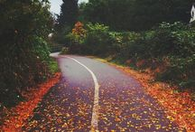 Fall mood