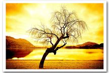 Lake Wall Art / Take a look at our Lake Wall Art pins. We sell 4 different types, Canvas Art, Wall Stickers, Wall Murals and Art Posters.  View more at http://www.wallart-direct.co.uk for more Lake Wall Art.