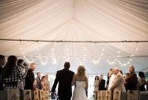 Ideas for Cortney's Wedding / by Amber Scarborough