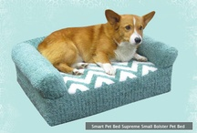 Dog Beds For Small Dogs And Puppies