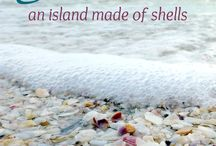 SHELL BEACHES OF THE WORLD