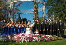 Wedding And Event Services / Full Service Wedding Planning, Corporate event planning, Wedding Packages