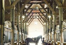There are stables and then there are these!