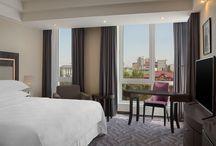 Sheraton Hotels / Sheraton Hotels