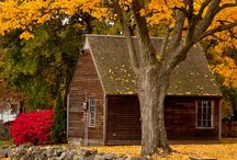 Fall Time is the Best Time / by Kelsi Ferguson