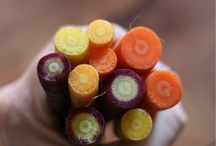 Carrots / by Seasonal Roots