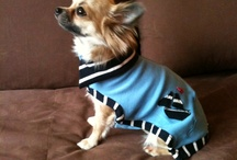 Upcycling // Recycling // Dog Clothing